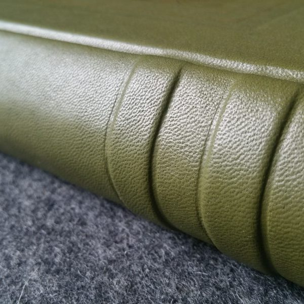 A closeup of raised bands on the spine of a green leather book.