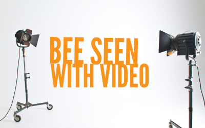 BEE SEEN WITH VIDEO