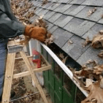 person on a ladder cleaning leaves out of rain gutters