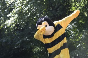 Bumblebee Sport Gallery Pic 05
