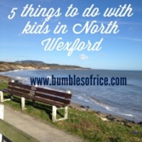 Five things to do with kids in North Wexford
