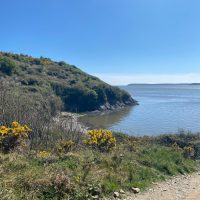 Wexford: Arthurstown to Duncannon Walking Trail with Kids