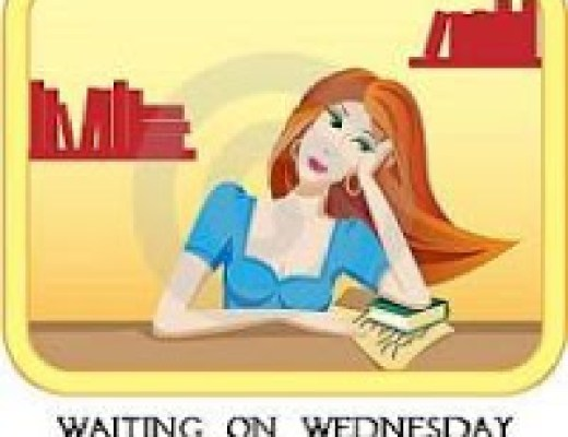 Waiting on Wednesday {1}: When We Collided by Emery Lord