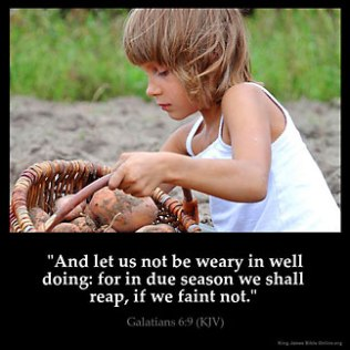 Galatians_6-9: And let us not be weary in well doing: for in due season we shall reap, if we faint not