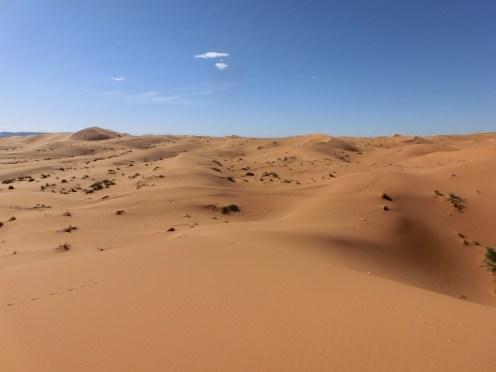 marocco2015_111
