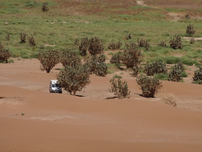 marocco2015_142