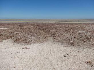 Wie an der Nordsee - kein Wasser in Sicht