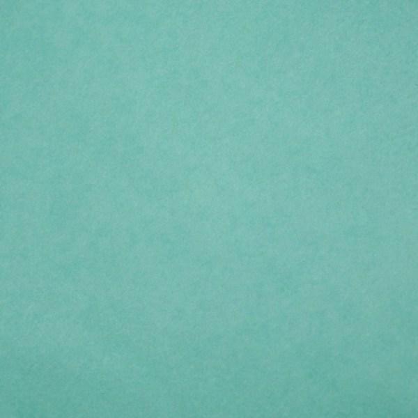 Бумага тишью, 50 х 70 см, зелёный