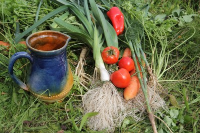 Sīpoli un tomati