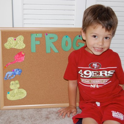 Theme of the Week – Frogs