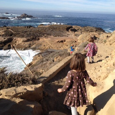 Point Lobos State Reserve hike