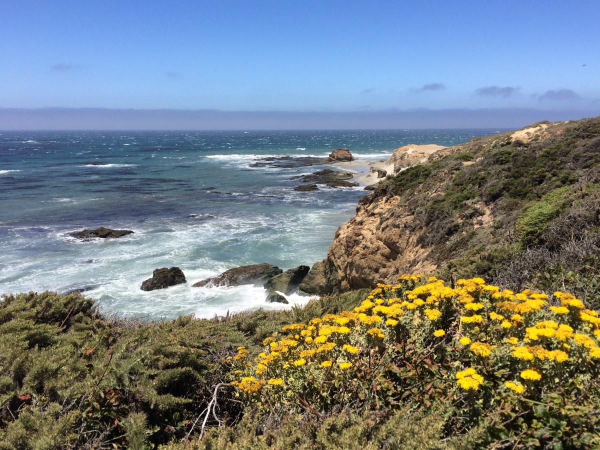 Monterey Hikes List