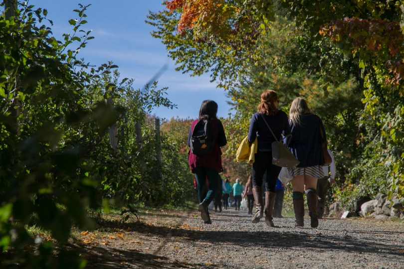 Under the changing leaves, students leave the orchard with the apples that they picked during the day. Photo by Silvia Mazzocchin/BU News Service