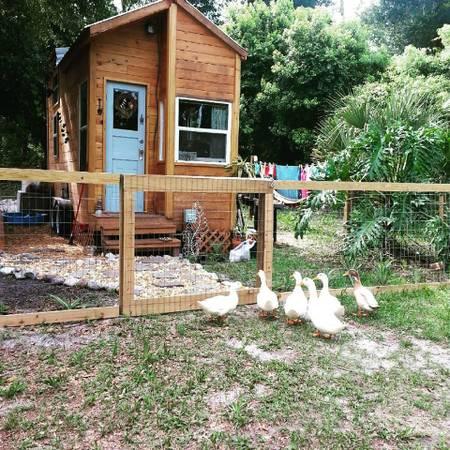 Tiny House Roundup Six tiny houses for sale near Orlando