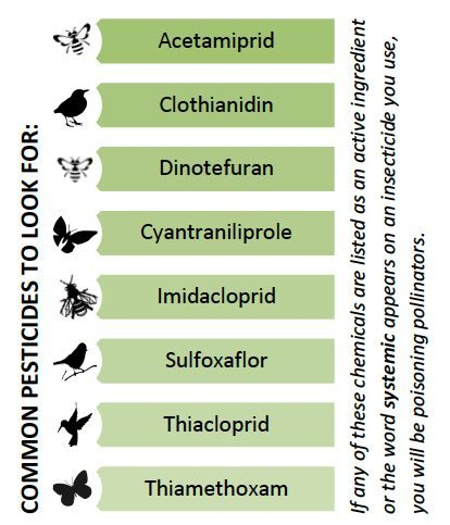 systemic-pesticides-list