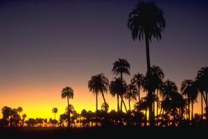Anochecer en el Parque el Palmar