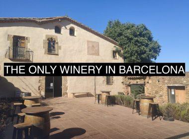 winery-in-barcelona-can-calopa-de-dalt-l-olivera-vinyes-de-barcelona