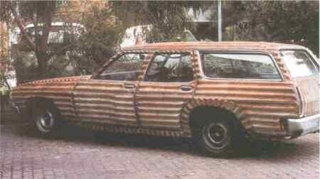 babe-magnet-zebra.jpg