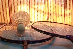 badminton-166415_640