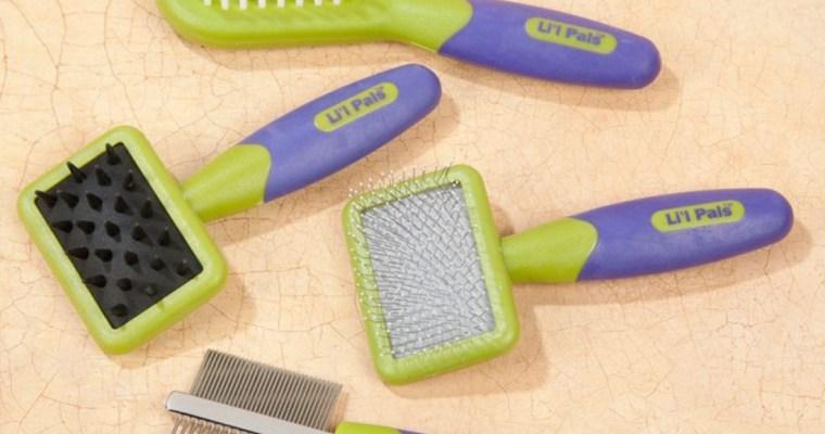 Grooming – Pet Parlour or DIY?
