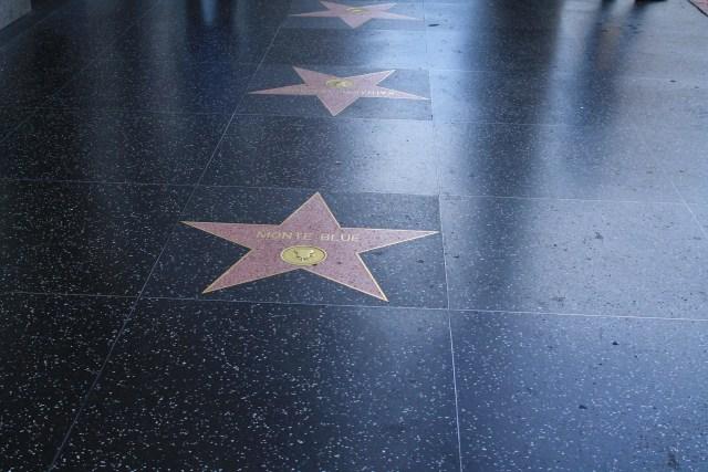 Lisa Rinna Walk of Fame