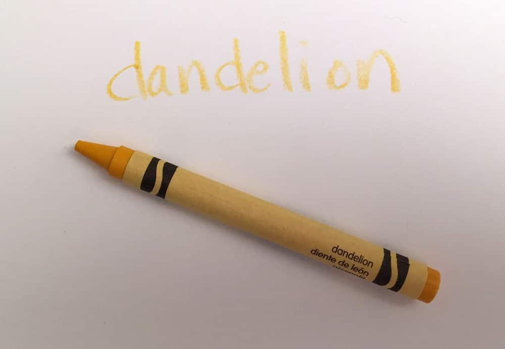 dandelion color