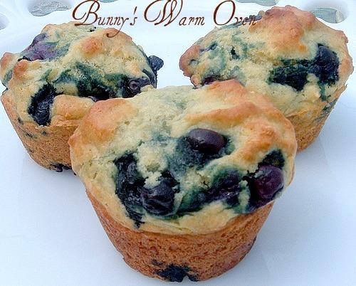Blueberry Yogurt Muffins for Breakfast - Bunny's Warm Oven
