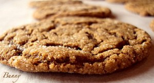 Soft and Chewy Molasses Cookies …and a Dog's Eye View of Gilbert's Creek