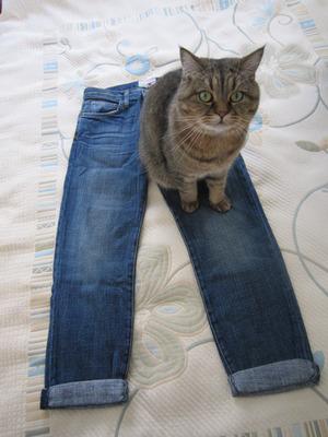カレントエリオットのジーンズ