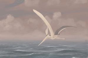 Pteranodon-sternbergi_jconway