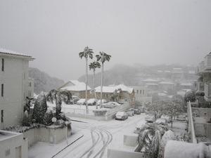 20130104の雪