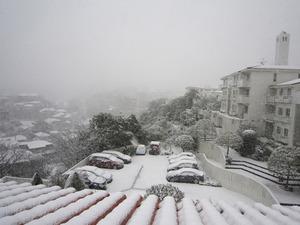 20130104の雪2