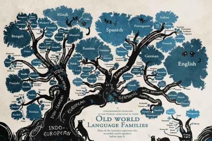 albero lingue indoeuropee