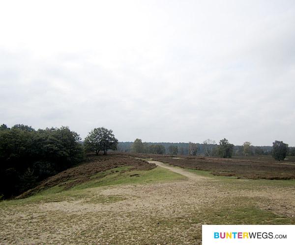 Heidschnuckenweg: Etappe 1 * BUNTERwegs.com