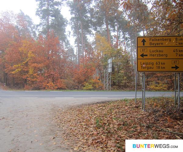 Zwischen Annaburg und Falkenberg (Elster), Deutschland * BUNTERwegs.com