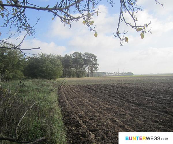 Und Felder * BUNTERwegs.com