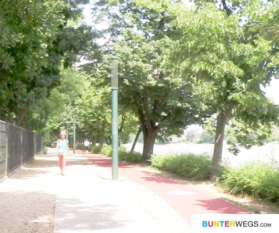 Magareteninsel in Budapest, Ungarn: Hier die extra angelegte Jogging-Strecke * BUNTERwegs. Der Outoor Blog für Frauen mit Liebe zum Wandern und zur Street Art