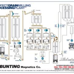 Grain Kernel Diagram 94 Honda Accord Fuse Box Flow Wiring