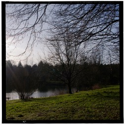 Fishing Pond 6