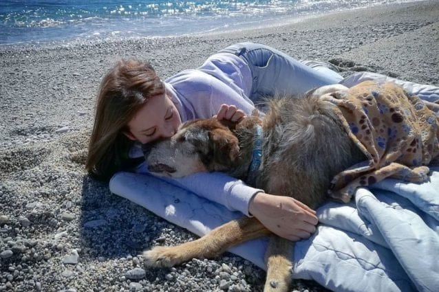"""Debora, la volontaria che adotta solo cani anziani: """"Non voglio che muoiano nei canili"""""""
