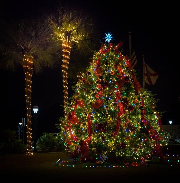 Buon Natale Italia.Buon Natale Dall Italia A Miami Buongiorno Miami