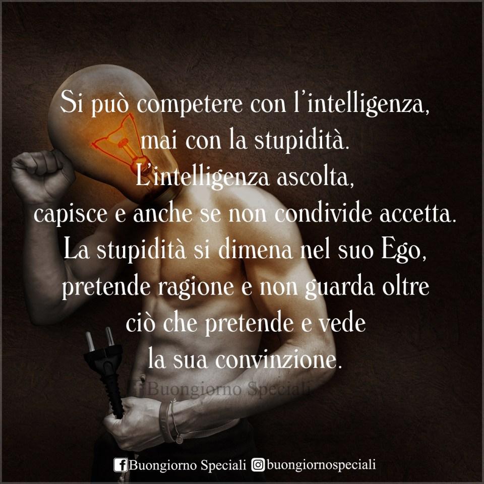 Uomo con testa a forma di lampadina. Frase: Si può competere con l'intelligenza, mai con la stupidità. L'intelligenza ascolta, capisce e anche se non condivide accetta. La stupidità si dimena nel suo ego, pretende ragione e non guarda oltre ciò che pretende e vede la sua convinzione.