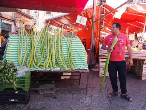 foodies-zucchine