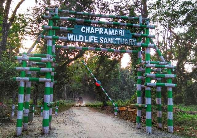 #wildlife #Dooars #roadtrip #travelblogger #westbengal