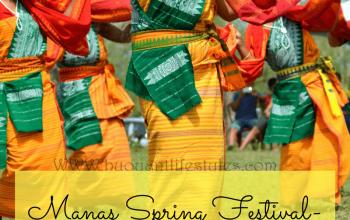 #guwahatiassam #manasspringfestival #ethnic #tribal