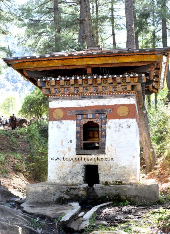 #Bhutan #travelblogger #tigersnestmonastery #thimpu #paro