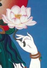 Lotus_hand_1