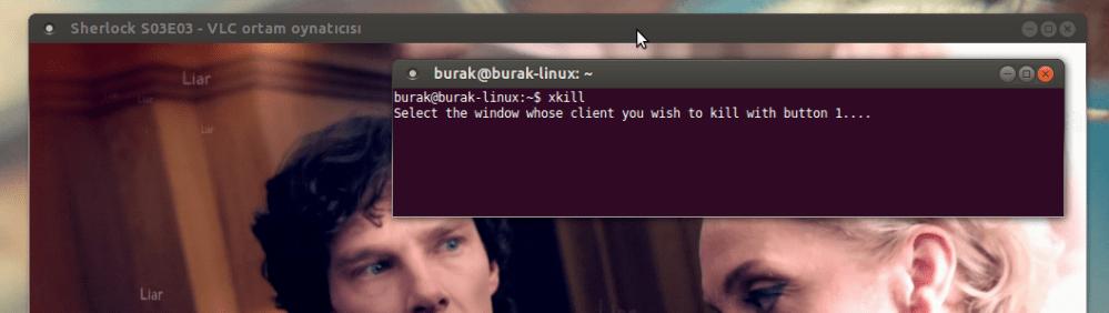 Ubuntu'da Kilitlenen Uygulamalar