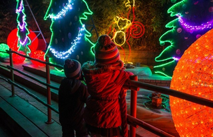The LA Zoo Lights Return For The Holidays, This Weekend!