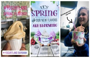 Yogurtland Has New Spring Flavors For FroYo And Soft Serve!
